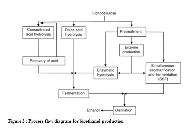 production of bioethanol from banana stem for student. Black Bedroom Furniture Sets. Home Design Ideas