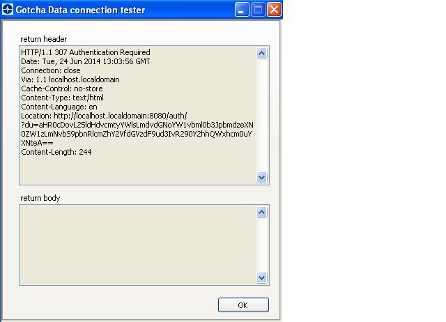 proxy server response 307.png