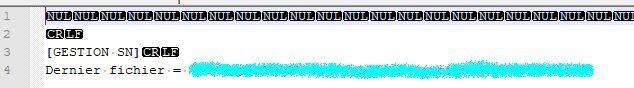Corrupted INI file.jpg