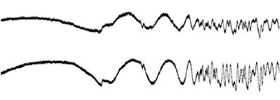 read double waveform text file and and plot graph in